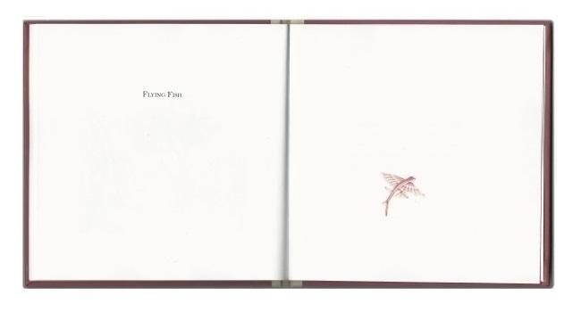 small book3